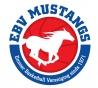 12 april 2019 EBV Mustangs